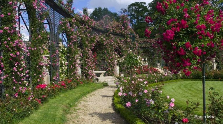 Rendez-vous aux Jardins 2020 – Reportés en 2021